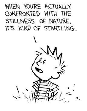 Calvin and Hobbes makes me so warm and cozy, even after all these years