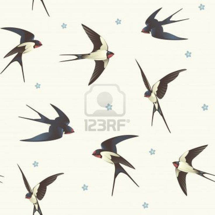 Seamless background with swallows  Pattern with a flock of birds Stock Photo