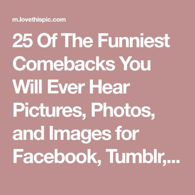 25 Of The Funniest Comebacks You Will Ever Hear Pictures, Photos, and Images for Facebook, Tumblr, Pinterest, and Twitter