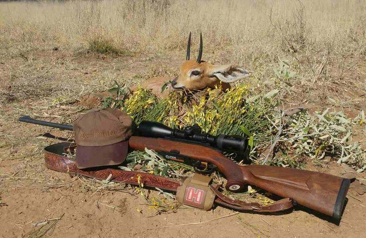 Trophy buck������ #africa #hunter #hunting #africahunting #saffari #saffarihunting #hunt #huntingseason #oryx#antilope #animal #nature #outdoorlife #outdoor #adventure #photography #savannah #antlers #horns #rifle #shooter #shooting #trophyhunt #trophy #jager #jagd#swarovskioptik #hornady#steyrmannlicher #steyr http://misstagram.com/ipost/1566849731200399104/?code=BW-kYdsnbcA