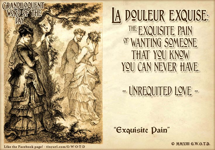 """Grandiloquent Word(s) of the Day: La douleur exquise (la DO•LUR ex•keez) Idiom -The exquisite pain. -Unrequited Love. -When you love someone but they don't love you back.  From: French """"douleur"""" meaning """"pain"""" + """"exquise"""" meaning """"exquisite"""".  Used in a sentence: """"If it weren't for la douleur exquise, I wouldn't have any reason to be on Facebook."""""""