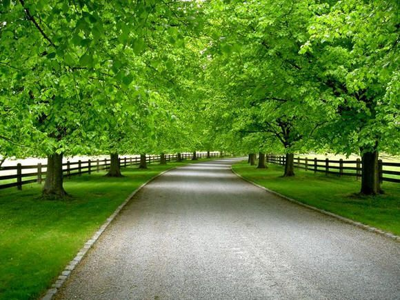landscaping acreage - Google Search