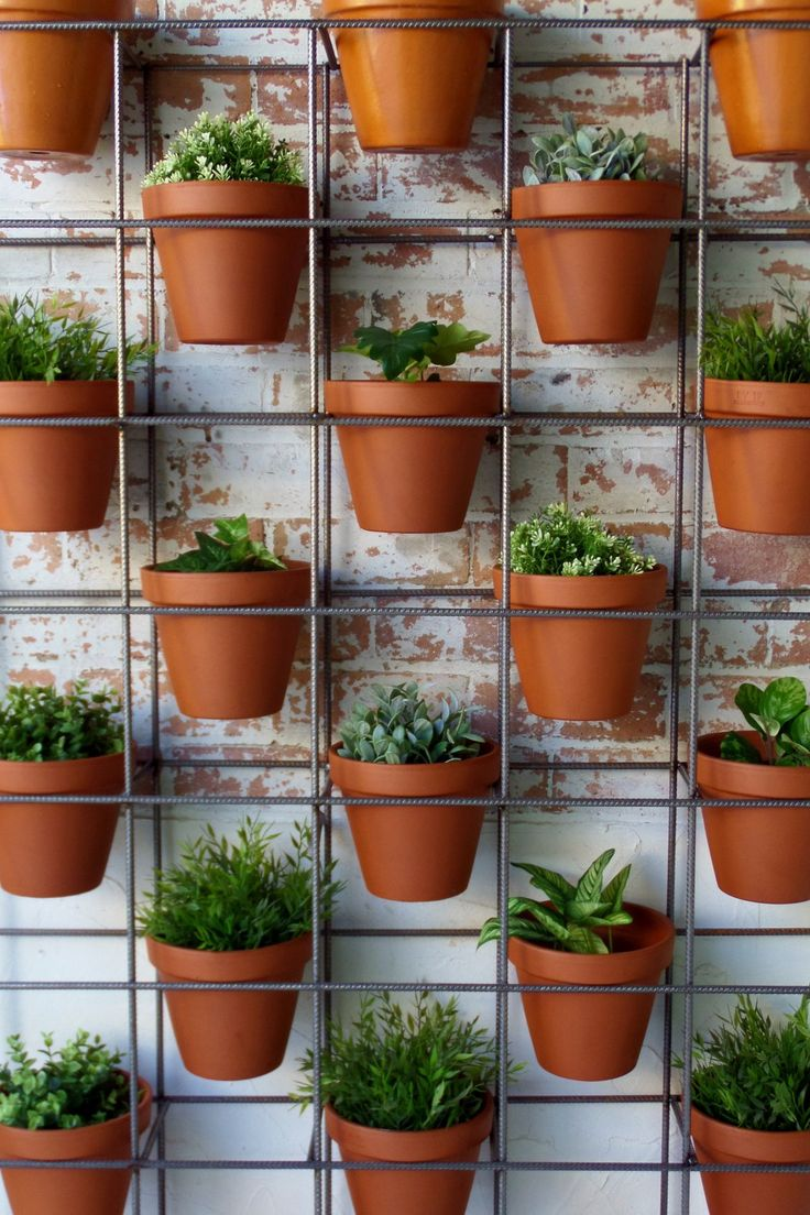 All your plants can live happily here