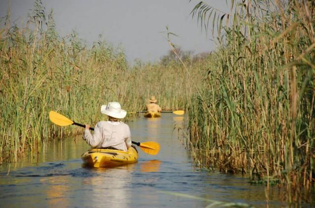 Paddling in the most pristine and beautiful areas of the Okavango Delta; leaving behind nothing but the whisper of your kayak passing through. Any questions? Drop us a line at info@gondwanatoursandsafaris.com