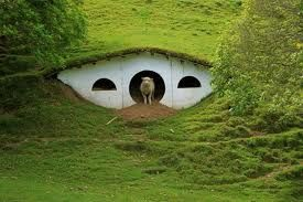 This makes me happy that someone took the time to build this sheep shelter. You never really think about things like this.