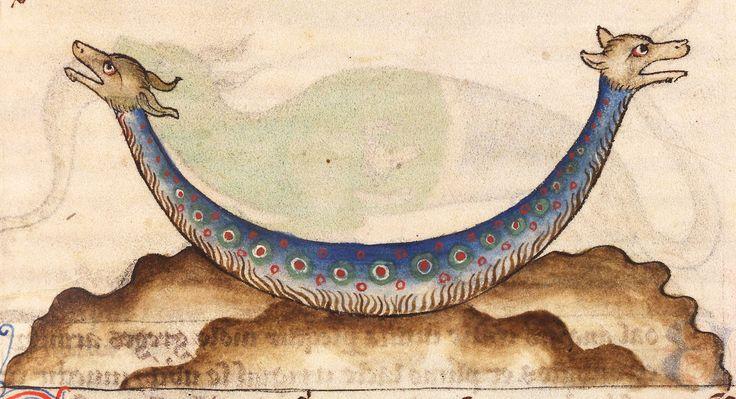amphivena or amphisbaena - a two-headed serpent De Natura animalium, Cambrai ca. 1270. Douai, Bibliothèque municipale, ms. 711, fol. 42r