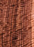 picture of figured black walnut lumber