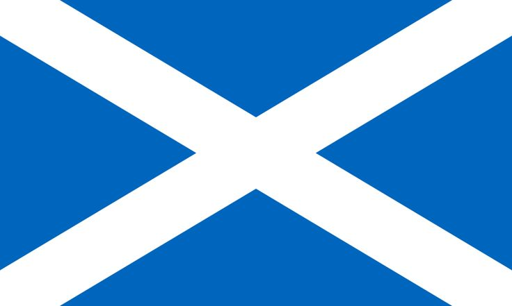 Flag of Scotland: Things Scottish, Scotland Style, Scotland Flags, Scottish Independence, Scotland Image, Scottish Flags, Scot Heritage, Andrew Crosses, Scotland Beautiful