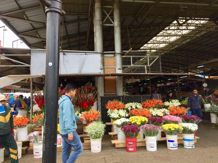 Feria Pinto #Temuco