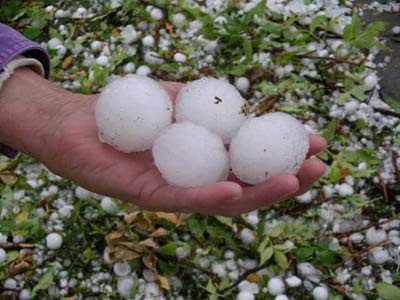 Hail Storm 2014,  golf ball size.