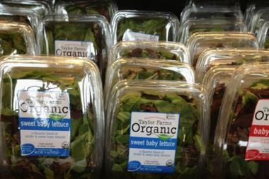 Taylor Farms of Mexico linked to tainted salad  Taylor Farms of Mexico salad mix was served at Olive Garden and Red Lobster restaurants. FDA says salad from Taylor Farms of Mexico is behind illnesses in Iowa and Nebraska, but the outbreak in 14 other states is still under investigation