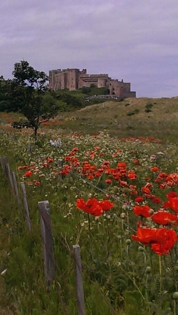 Lovely to see Bamburgh Castle from a different angle!