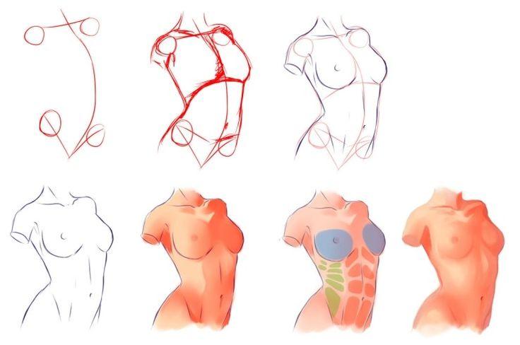 그림 자료 / 남자 몸 그리기 / 여자 몸 그리기 : 네이버 블로그