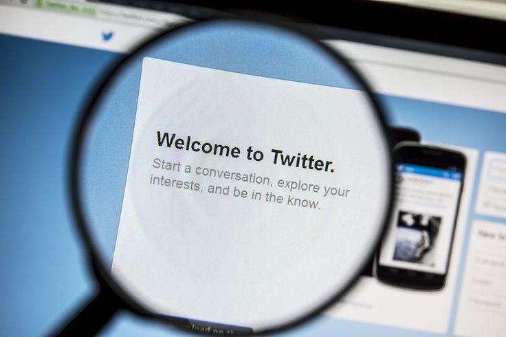 Ostersund, Sweden - April 13, 2014: Twitter website under a magn