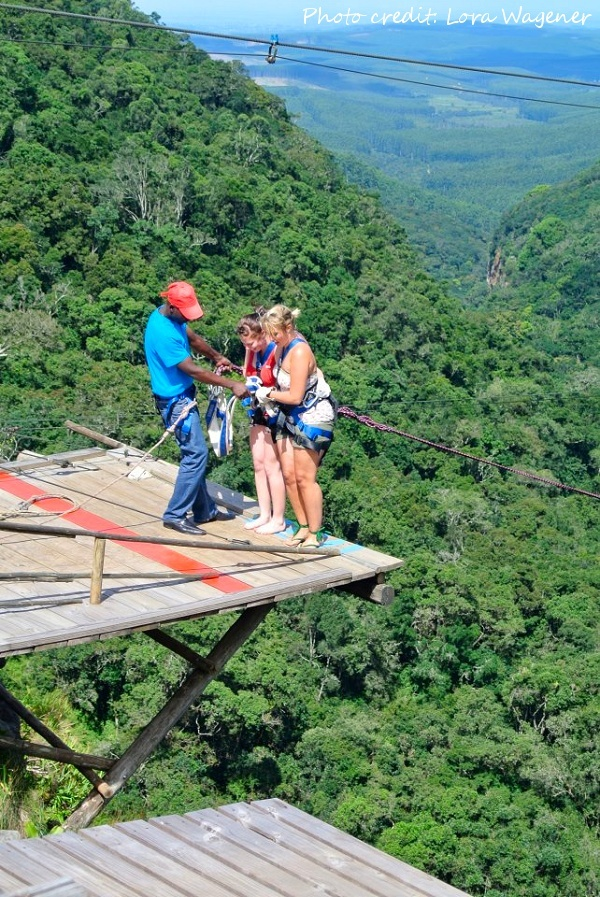 You can bungy jump in the Tzaneen area while volunteering at the Vervet Monkey Sanctuary.