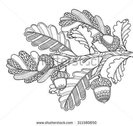 oak leaf zentangle borders - Google Search