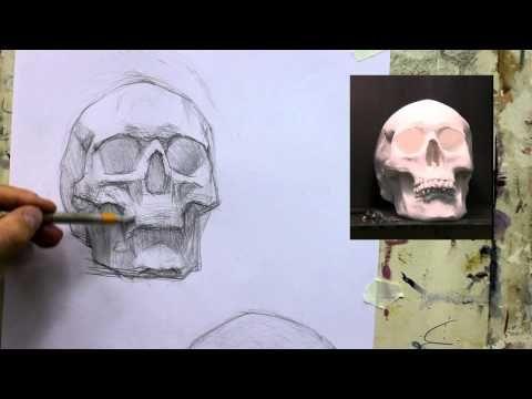 Обучение рисунку. Портрет. 20 серия: рисунок черепа в 2 ракурсах, 2 часть. - YouTube