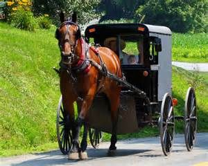 Amish - going into town