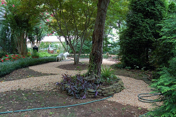 17 Best images about No Mow Yards on Pinterest | Gardens ... on No Mow Backyard Ideas id=46632