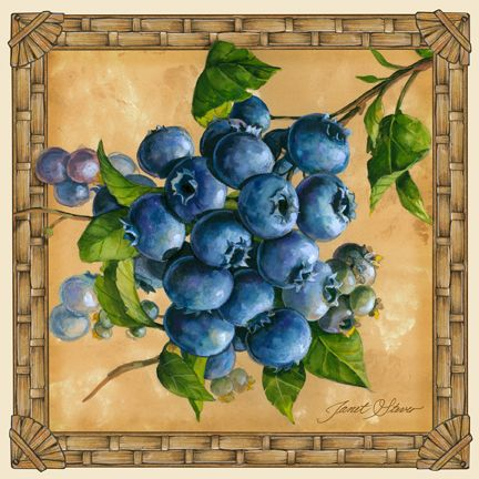 """Blueberries"" ~ by Janet Stever"