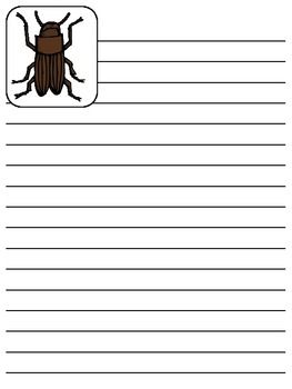 Free Collection of Mealworm Stationery ~ Different Life Cycle Stages