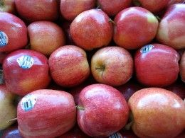 Apples are usually safe for people with GERD.