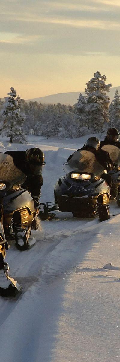 Ute etter en gave til dem som er glad i dyr og natur? En snøscootersafari for to er den perfekte gave til et aktivt par! En hyggelig vinteraktivitet for to personer der førerkort for scooter eller tidligere erfaring ikke trengs.