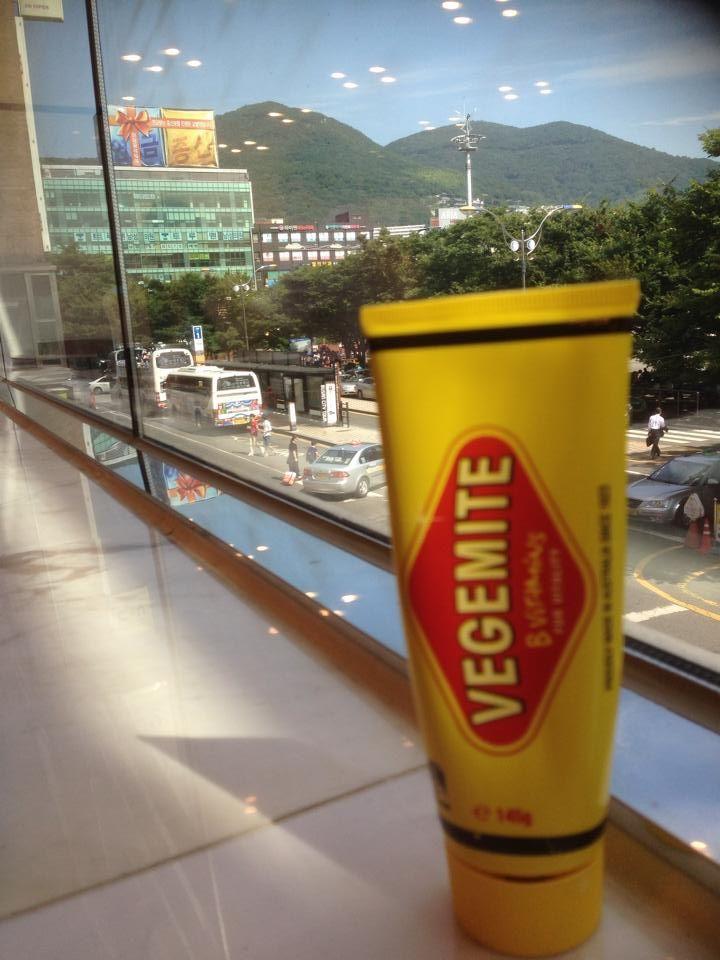 Vegemite on tour in Busan Korea