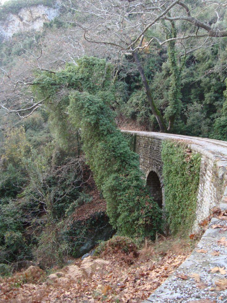 Milies, Pilio http://goo.gl/yUeD7k #travel #greece #milies #pilio #village