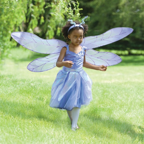 Lots of cute costumes here - now on sale!  Girl's Dragonfly Fairy Halloween Costume