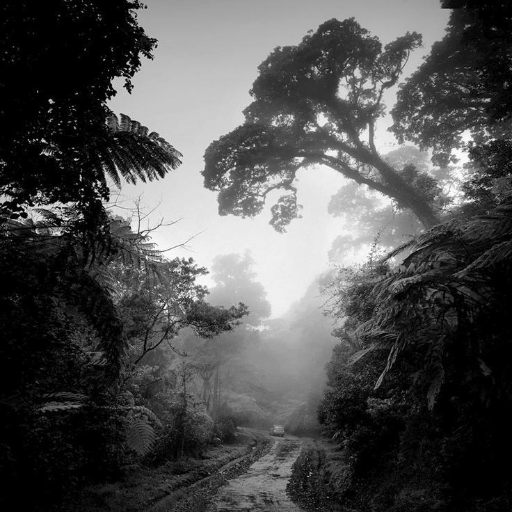 Ciwidey Highland - West Java