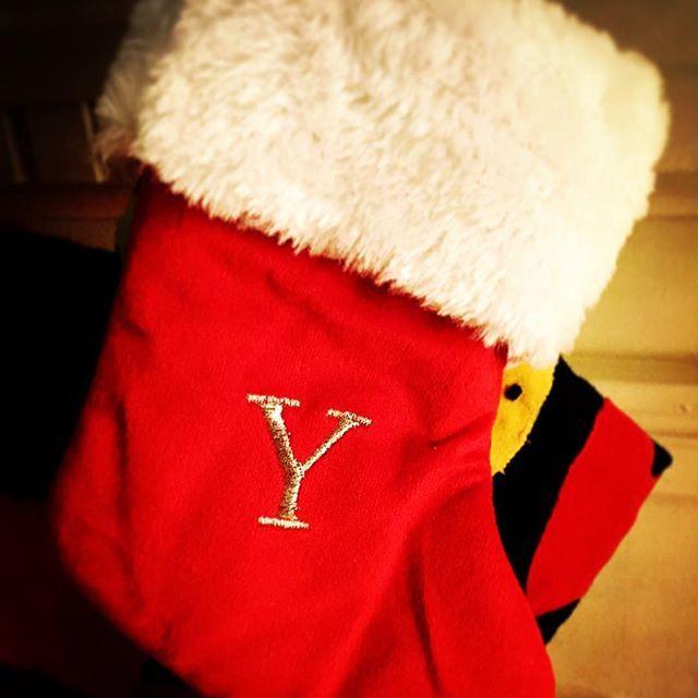 今日はゆきの #クリスマス #靴下 (って言うのかしら?)を見つけて来ました〜 Yという文字はなかなかないのでとっても嬉しかった😆💕💕 Today I could find a #stocking for Yuki!  It's always difficult to find the letter Y so I was so happy when I saw the letter Y! 😍  #愛猫 #スノーベンガルゆき #ベンガル #ベンガル猫 #猫 #ねこ #ねこら部 #neko #snowbengal #bengalyuki #bengal #bengalcat #cat #catlover #crazycatlady #親バカ