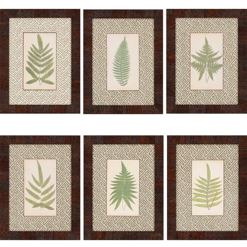 Found it at Wayfair - Ferns by Lowes 6 Piece Framed Graphic Art Set