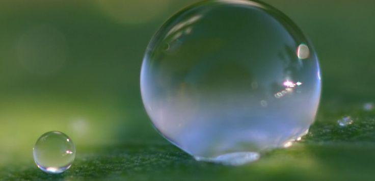 VIDEO. Une goutte d'eau fait du trampoline