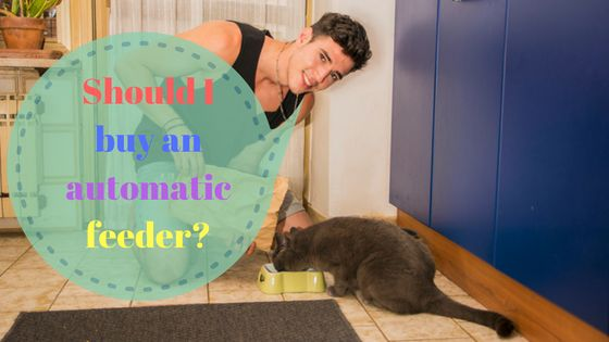 Automatic cat feeders has many advantages and benefits. don't now what to look for? click here to learn more about auto cat feeders  https://catoverdose.com/best-automatic-cat-feeder-reviews/