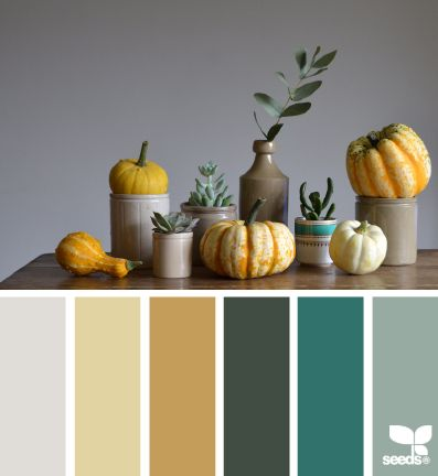 color harvest | design seeds | Bloglovin