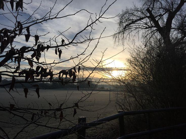 Bright and early frosty morning, Aldenham Herrtfordshire