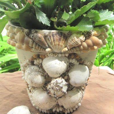 Love pots!: Plants Can, Gardens Ideas, Sea Shells, Coastal Gardens, Shells Flower, Beaches Theme, Flower Pots, Shells Encrust, Clay Pots