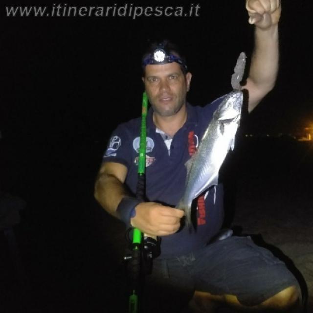 Serra a Marina di Capalbio con innesco voluminoso pesca fishing