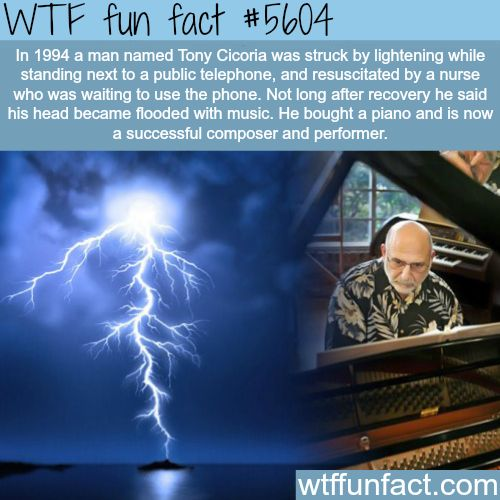 Man gets hit by lightning and develops a musical talent - WTF fun facts