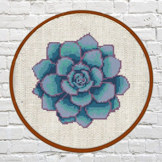 Succulent cross stitch pattern cactus cross stitch by Fuzzy36