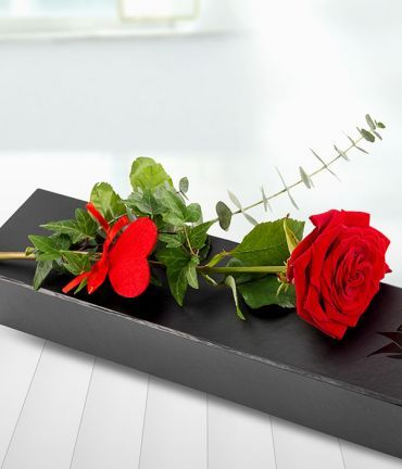 This Valentine's Day send your heart with a single red Rose. Beautifully presented in a black gift box.