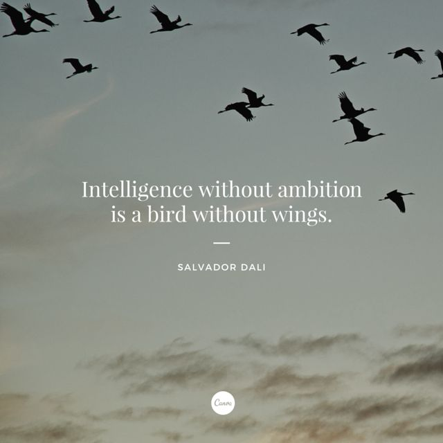 Intelligence without ambition is a bird without wings. - Salvador Dali #quote #inspiration