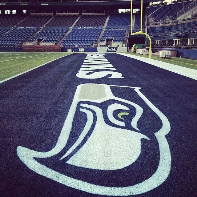 Seahawks end zone! The Packers won't touch it this Sunday!!! We're looking at two rings in a row!!