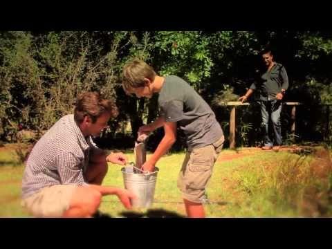 Snotkop - Song Vir My Dad - YouTube