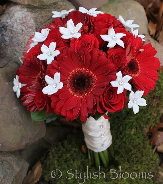 GERBERE DASIEY RED AND WHITE WEDDING BOQUET