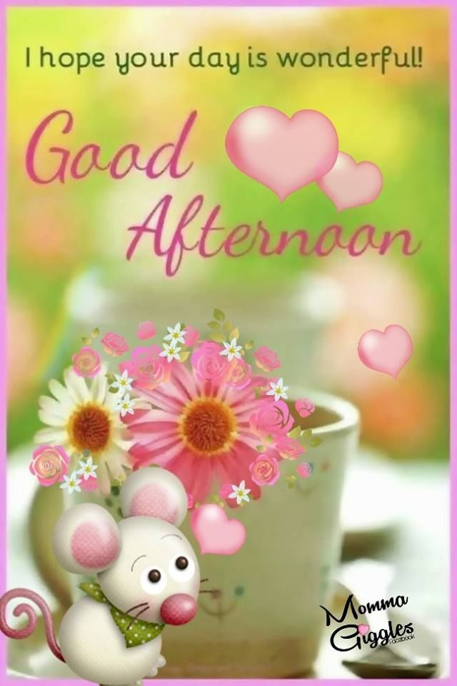 I hope your day is wonderful, good afternoon | Good afternoon, Good afternoon quotes, Afternoon messages
