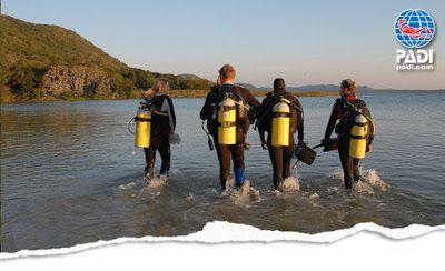 Seals diving center: 5 +1 padi ειδικότητες που θα σε κάνουν να δεις την...