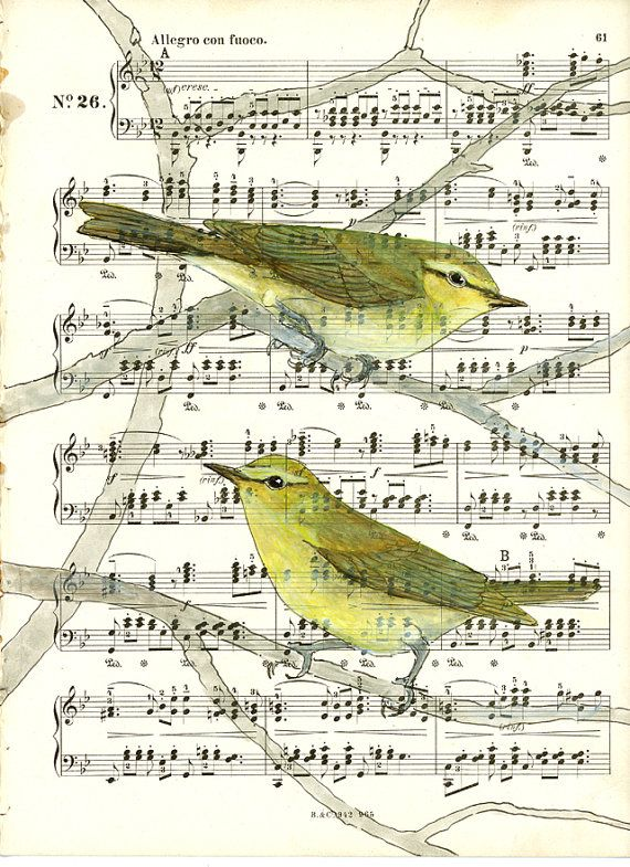 Willow warblers on a page of music by by VeronicaRothArt on Etsy