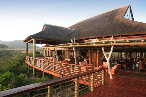 Home to an abundance of animal and birdlife, the Garden Route Game Lodge is the perfect venue from which to explore this beautiful nature reserve.